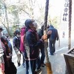 初詣②(すみよし神社)